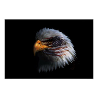 Bald Eagle head with a American flag on his face Poster