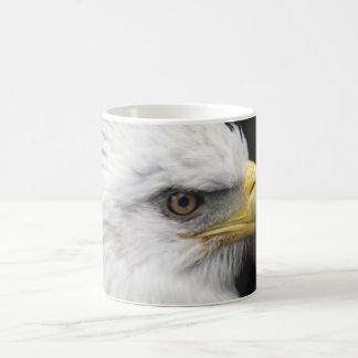 Bald Eagle III Coffee Mugs