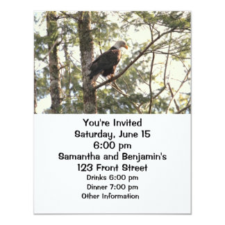 Bald Eagle in a Tree Personalized Invitations