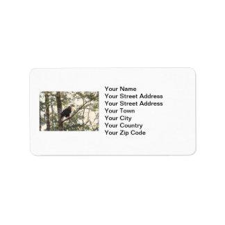 Bald Eagle in a Tree Address Label
