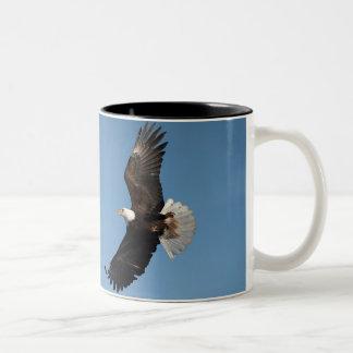 Bald Eagle in Flight, Haliaeetus leucocephalus, 2 Two-Tone Coffee Mug
