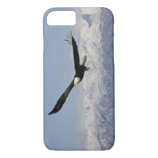 Bald Eagle in Flight, Haliaeetus leucocephalus, 3 iPhone 7 Case