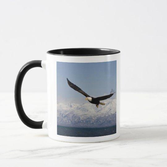 Bald Eagle in Flight, Haliaeetus leucocephalus, 3 Mug
