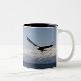 Bald Eagle in Flight, Haliaeetus leucocephalus, 3 Two-Tone Coffee Mug