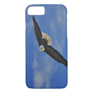 Bald Eagle in flight, Haliaetus leucocephalus, iPhone 7 Case