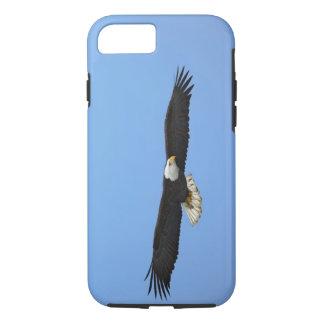 Bald Eagle in flight, Homer, Alaska, Haliaetus iPhone 8/7 Case