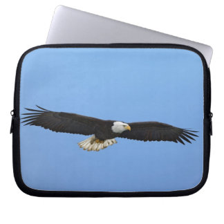 Bald Eagle in flight, Homer, Alaska, Haliaetus Laptop Computer Sleeves