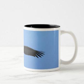 Bald Eagle in flight Homer Alaska Haliaetus Mugs