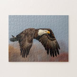 Bald Eagle in flight Jigsaw Puzzle