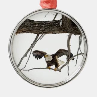Bald Eagle in Flight Metal Ornament