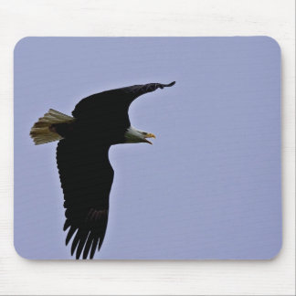 Bald Eagle in Flight Overhead Mouse Pad
