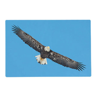 Bald Eagle in flight Placemat