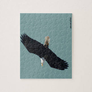 bald eagle in flight puzzles