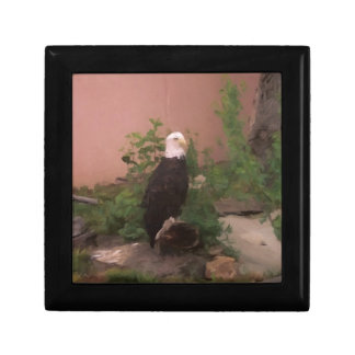 Bald Eagle in Paint Jewelry Box