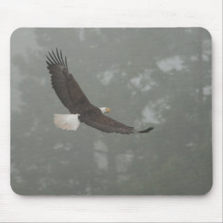 Bald Eagle in the fog Mouse Pad