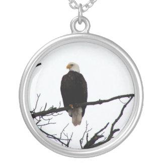 Bald Eagle In Tree Jewelry