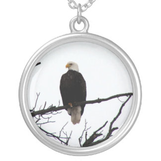 Bald Eagle In Tree Round Pendant Necklace