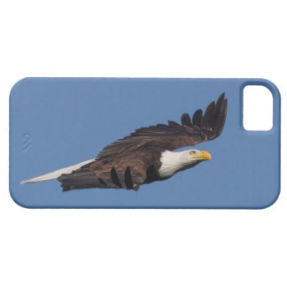 Bald Eagle iPhone 5 case America cell phone cover