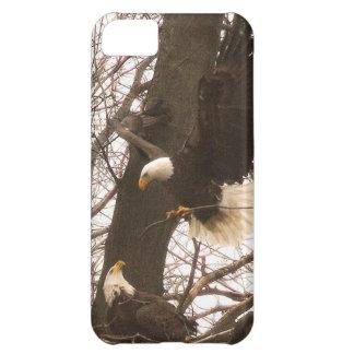 bald eagle iPhone 5C cases