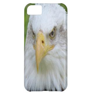 Bald Eagle iPhone 5C Cover