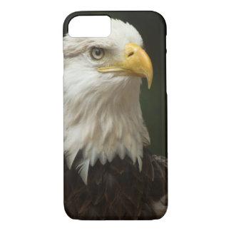 Bald Eagle iPhone 8/7 Case