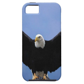 Bald Eagle iPhone SE/5/5s Case