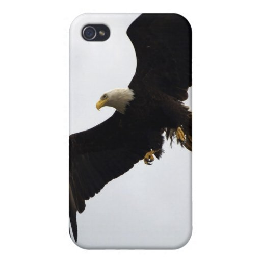 Bald Eagle iPhone Speck Case iPhone 4/4S Cases