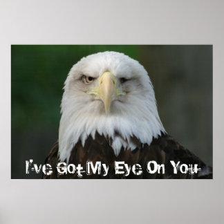 Bald Eagle I've Got My Eye On You Poster