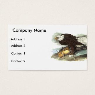 Bald Eagle, John Audubon Business Card