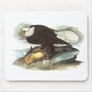 Bald Eagle, John Audubon Mouse Pad