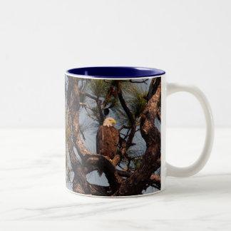 Bald Eagle @ Kennedy Space Center Two-Tone Coffee Mug