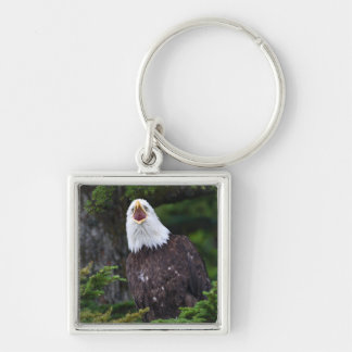 Bald Eagle Keychain