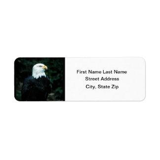 Bald Eagle Custom Return Address Label