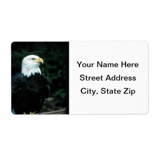 Bald Eagle Shipping Labels