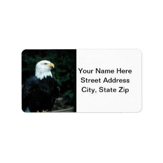 Bald Eagle Personalized Address Labels