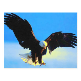 Bald Eagle Landing Postcard