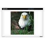 bald eagle laptop decal