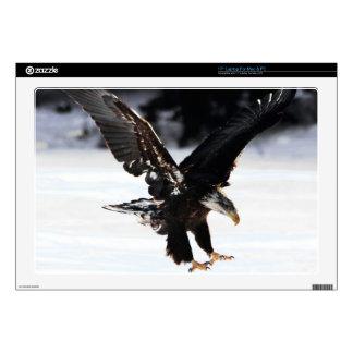 Bald Eagle Laptop Decals