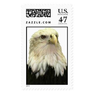 Bald Eagle Large Postage