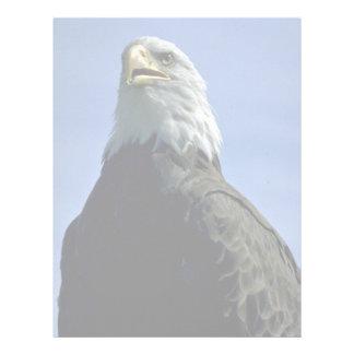 Bald eagle letterhead