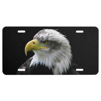 Bald Eagle License Plate