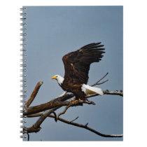 Bald Eagle Lift Off Notebook