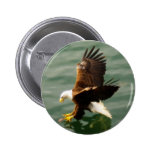 Bald Eagle Motivational Gift Buttons