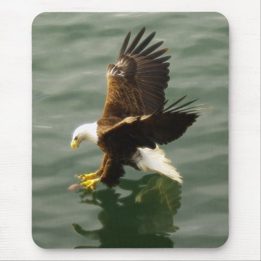 Bald Eagle Motivational Gift Mouse Pad