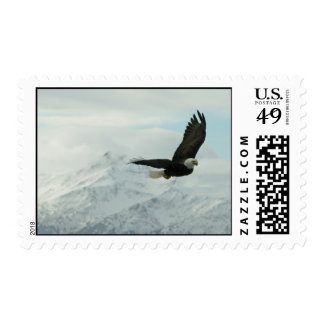 Bald eagle & mountains stamp