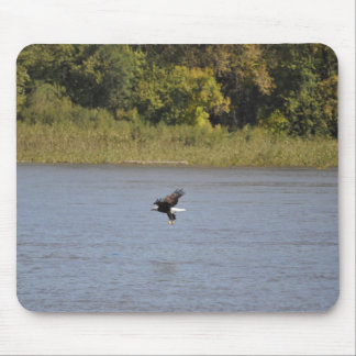 Bald Eagle Mouse Pad