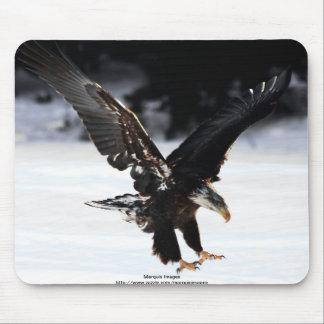 Bald Eagle Mouse Pad