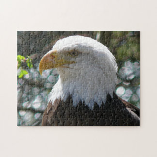 Bald Eagle - National Bird Of The United States Jigsaw Puzzle