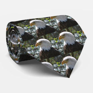Bald Eagle - National Bird Of The United States Neck Tie