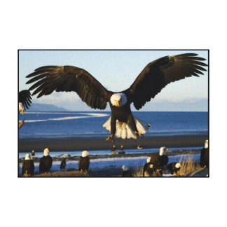 Bald Eagle ocean  Wrapped Canvas Print